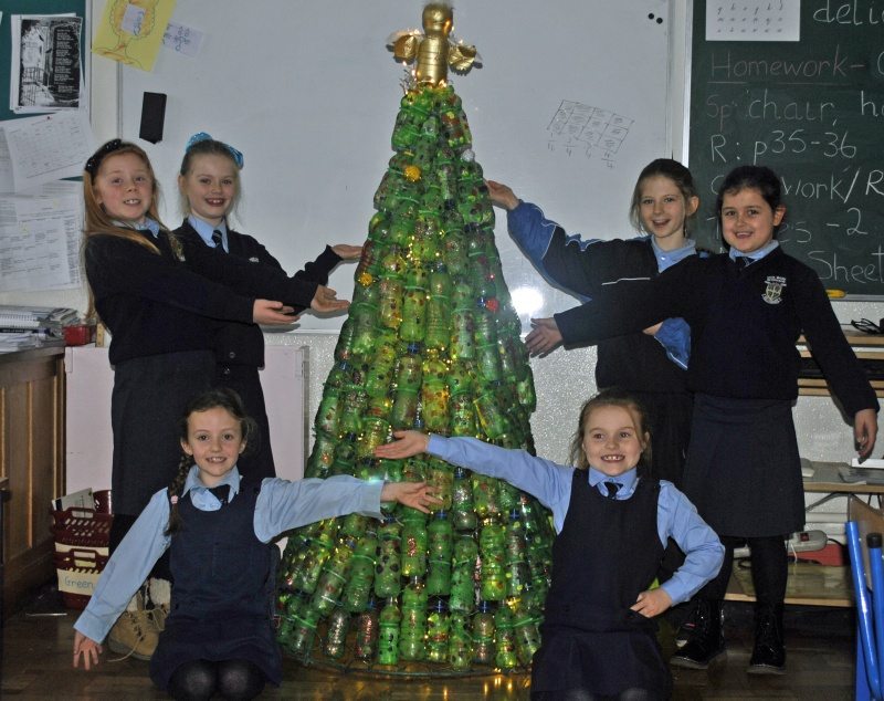 Look at our Tree, it's called Message in a Bottle!
